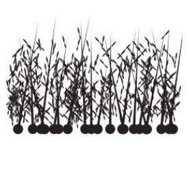 micro_fibras_keratina